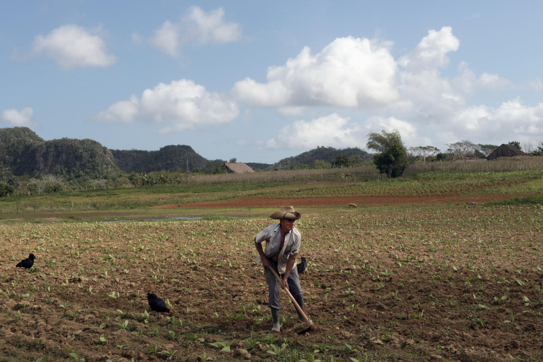 Mal di Cuba_68